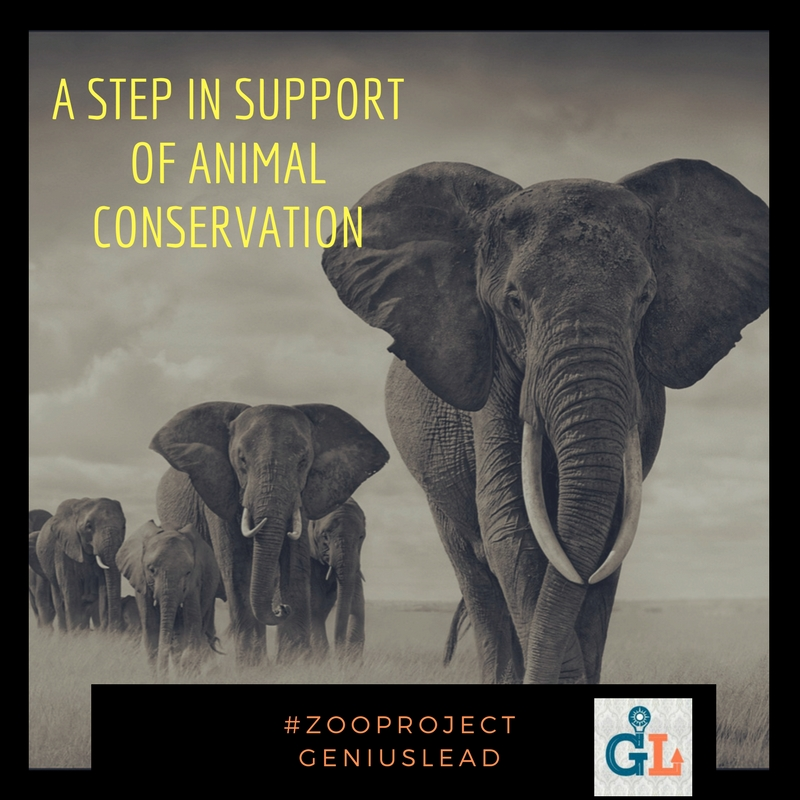 A Step in Support of Animal Conservation_GeniusLead